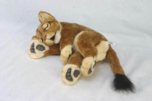 Mooie Witte Leeuw welp slapend  40 cm kopen
