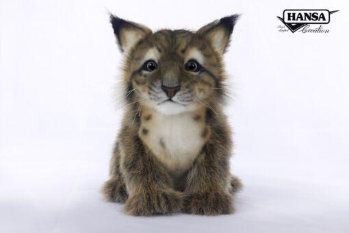 Mooie Witte Lynx welp  19 cm kopen