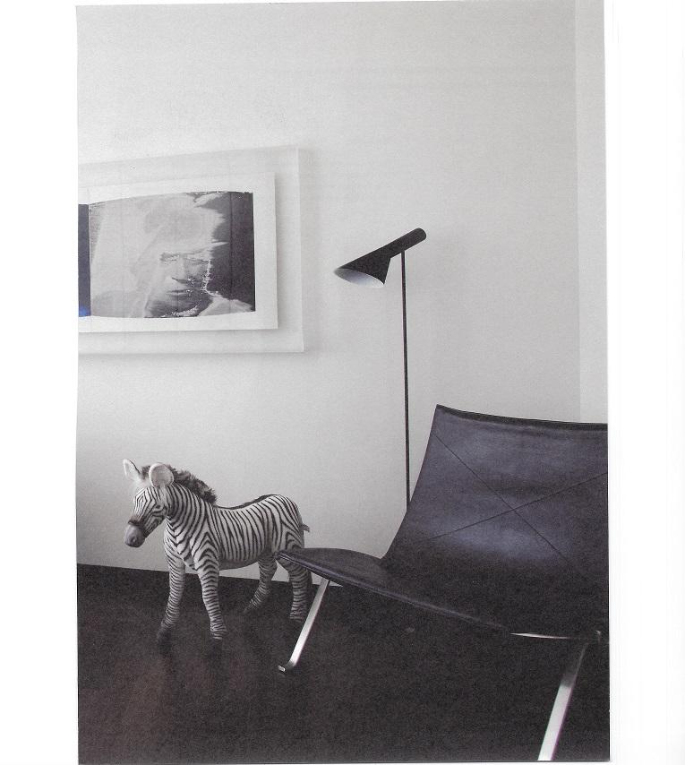 Kleine pluchen zebra in de woonkamer