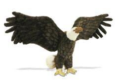 Mooie Donkere Amerikaanse adelaar decoratie  70 cm kopen