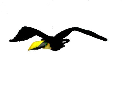 Mooie Zwarte Toekan vliegend W. decoratie  77 cm kopen