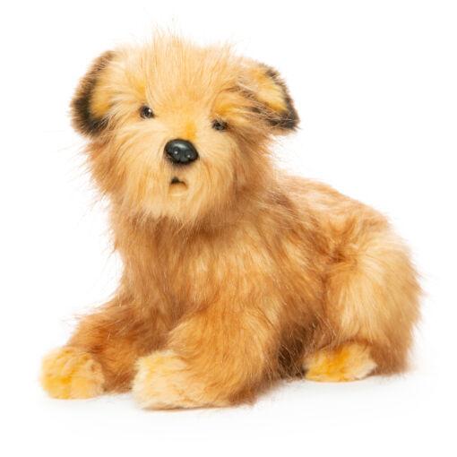 Mooie Beige Norfolkterriër hond knuffel  23 cm kopen