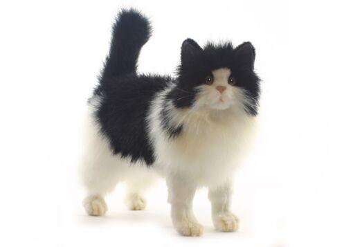 Mooie Zwarte Kat zwart-wit knuffel  40 cm kopen