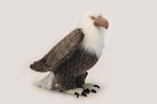 Mooie XL Bruine Amerikaanse adelaar decoratie  45 cm kopen