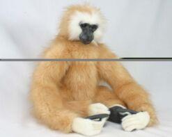 Mooie Witte Gibbon knuffel  60 cm kopen