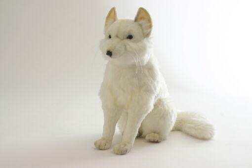 Mooie XL Witte Poolvos knuffel  50 cm kopen