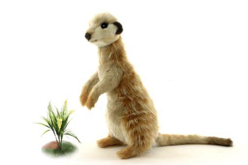 Mooie Beige Meerkat zittend knuffel  32 cm kopen