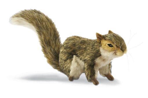 Mooie Witte Grijze eekhoorn knuffel  22 cm kopen