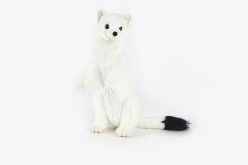 Mooie Witte Hermelijn wit Hermelijn knuffel  30 cm kopen
