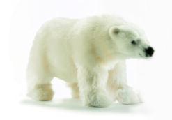 Mooie Witte IJsbeer lopend knuffel  47 cm kopen
