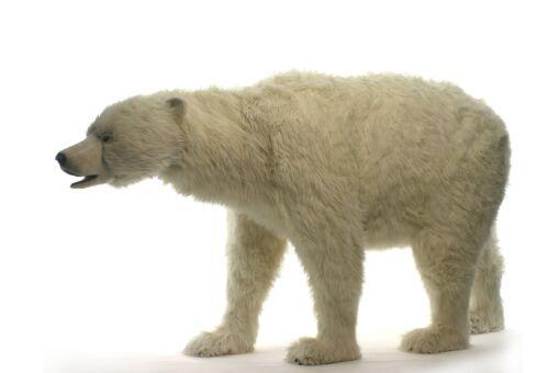 Mooie XL Witte IJsbeer lopend decoratie  230 cm kopen