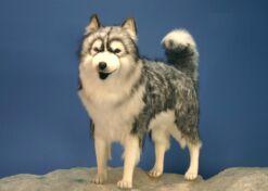 Mooie XL  Husky grijs knuffel  94 cm kopen