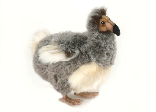 Mooie Witte Dodo vogel knuffel  24 cm kopen