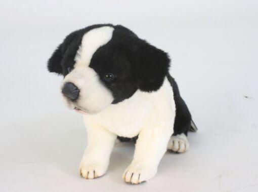 Mooie Zwarte Bordercollie pup zittend knuffel  35 cm kopen