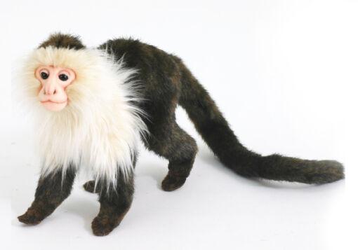 Mooie Zwarte Capucijnaap knuffel  23 cm kopen