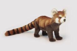 Mooie Groene Kleine panda staand knuffel  67 cm kopen