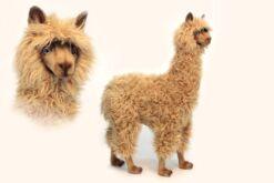 Mooie XL Beige Alpaca woonkamer 100 cm kopen