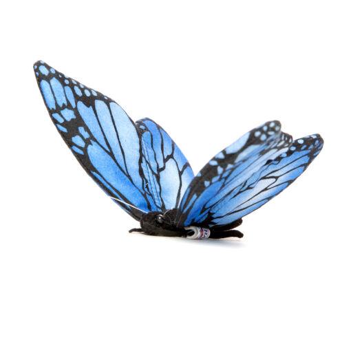 Mooie Blauwe Vlinder blauw .W knuffel  14 cm kopen