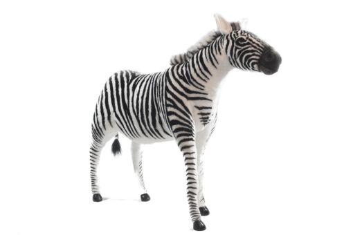 Mooie XL Zwarte Zebra patroon S decoratie  147 cm kopen