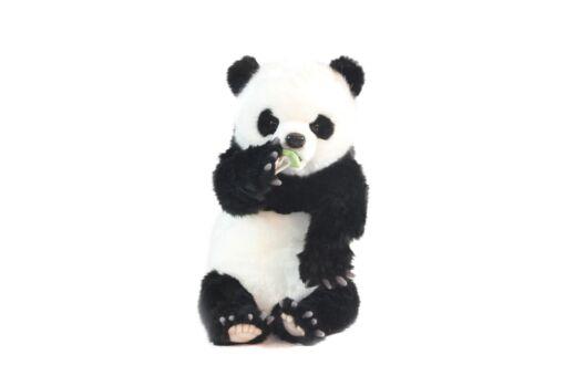Mooie Groene Panda welp knuffel  34 cm kopen