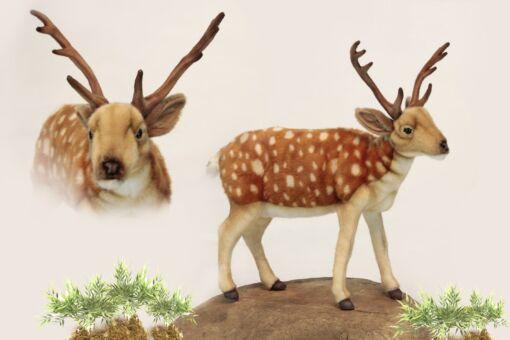 Mooie Roodbruine Formosa sikahert knuffel  55 cm kopen