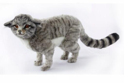 Mooie Grijze Schotse wilde kat staand knuffel  60 cm kopen