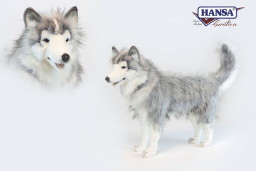Mooie XL Grijze Husky grijs staand knuffel  75 cm kopen