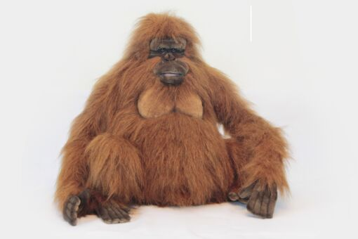 Mooie XL Roodbruine Volwassen Oerang oetang knuffel  62 cm kopen