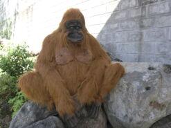 Mooie XL Roodbruine Orang-oetan volwassen mama decoratie  85 cm kopen