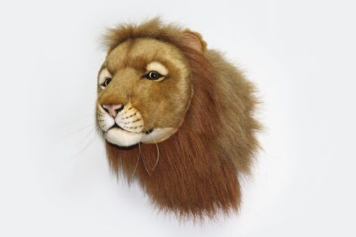 Mooie Witte Leeuw hoofd knuffel  39 cm kopen