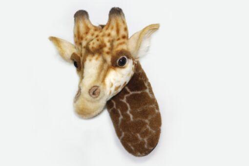 Mooie Licht bruine Giraffe hoofd knuffel  35 cm kopen