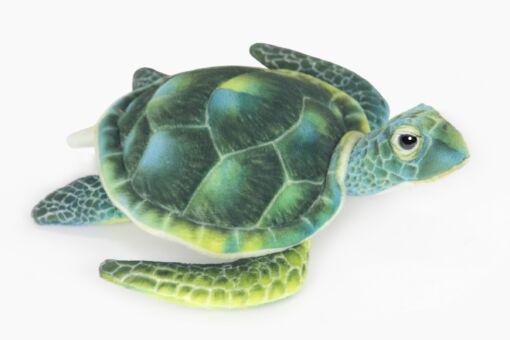 Mooie Groene Groene schildpad L 29 cm knuffel  29 cm kopen