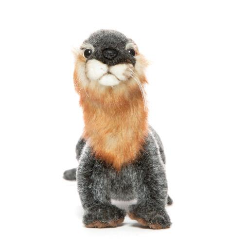 Mooie Bruine Otter knuffel  23 cm kopen