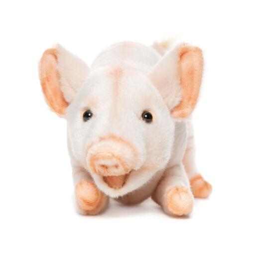Mooie Roze Biggetje knuffel  35 cm kopen