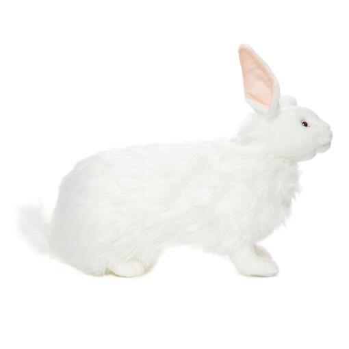 Mooie Witte Poolhaas knuffel  45 cm kopen