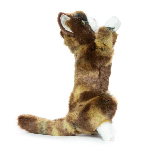 Mooie Donkere Speelse kitten knuffel  25 cm kopen