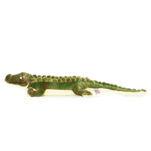 Mooie Groene Krokodil knuffel  58 cm kopen