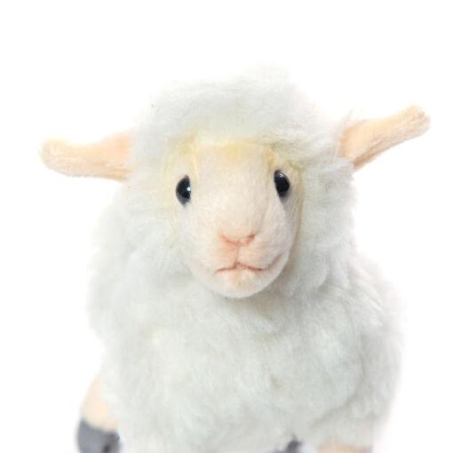 Mooie Witte Lammetje knuffel  18 cm kopen