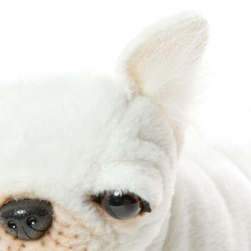 Mooie Witte Franse buldog . H knuffel  22 cm kopen