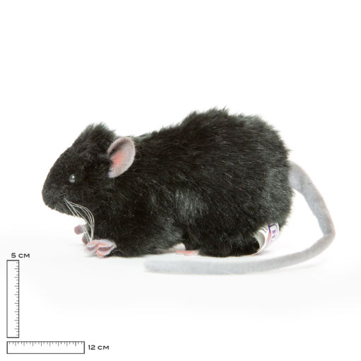 Mooie Zwarte Dikke rat zwart knuffel  12 cm kopen